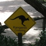 Singapur Zoo Warnschild