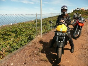Louisa_Bike_Tour_Teneriffa (8)